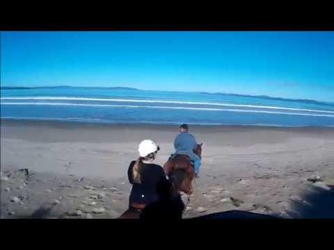 Seven Mile Beach Ride