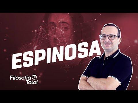 Espinosa e o livre-arbítrio - Prof. Anderson