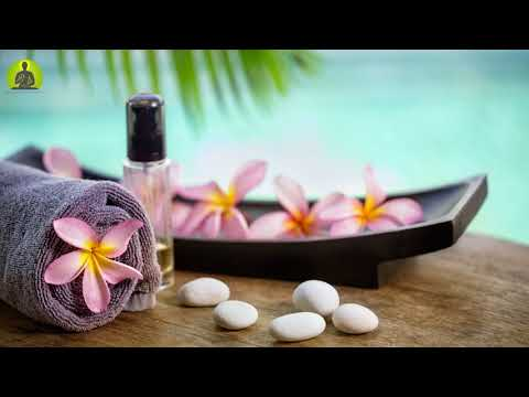 1 Hour Meditation Music l Relaxing Spa Instrumental Music l Healing Music Relax Mind Body