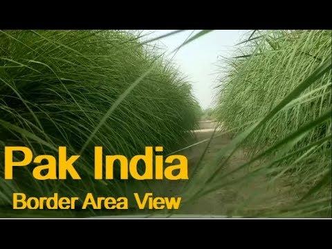 Pak India border area view! Jalwala Bahawalnagar Pakistan