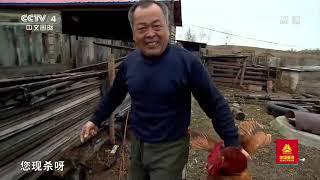 [远方的家]最美是家乡——黑龙江 金矿过采区上的独特产物  CCTV中文国际 - YouTube