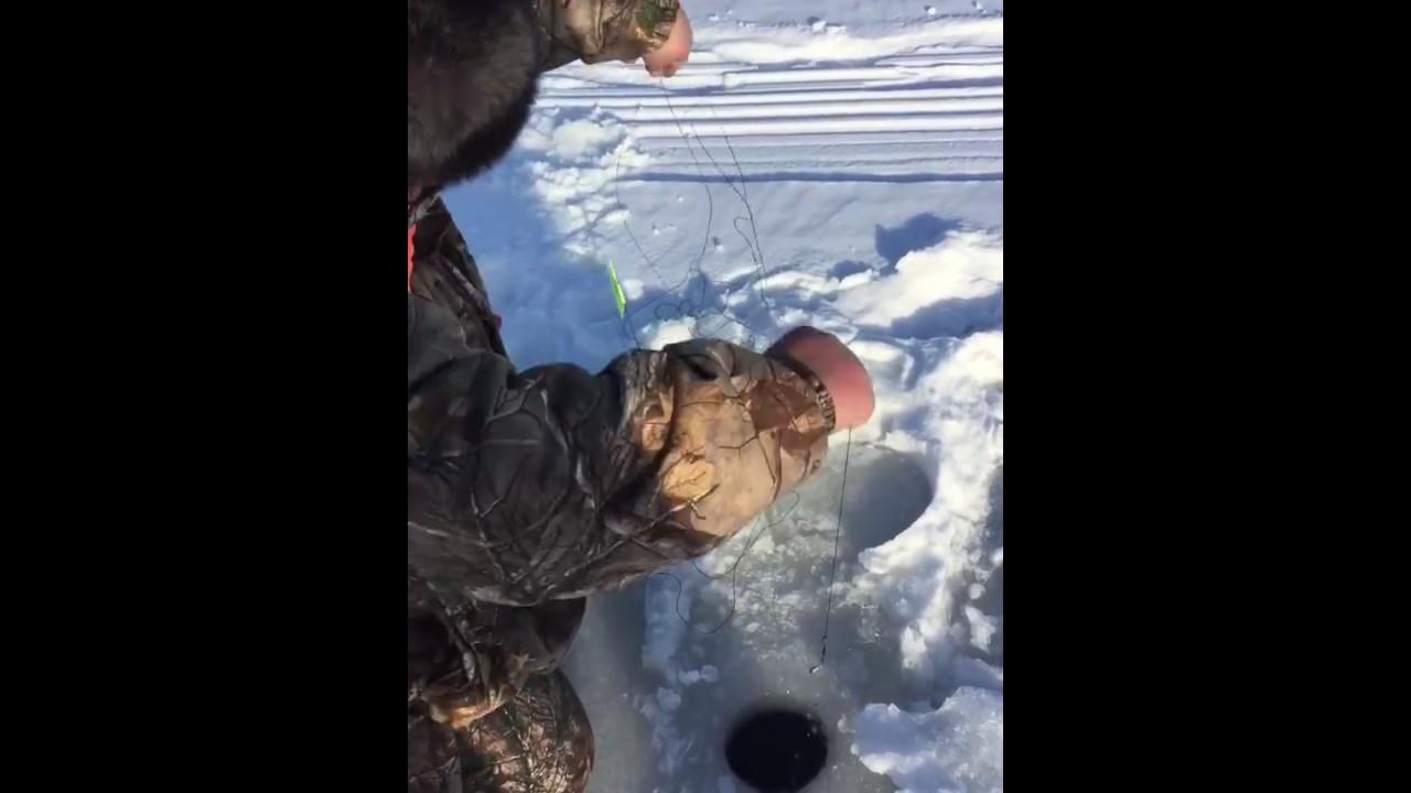 Illinois ice fishing ft farm pond bassin youtube for Illinois ice fishing reports