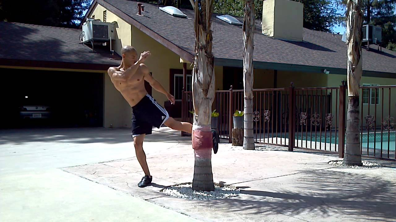 Image result for muay thai conditioning