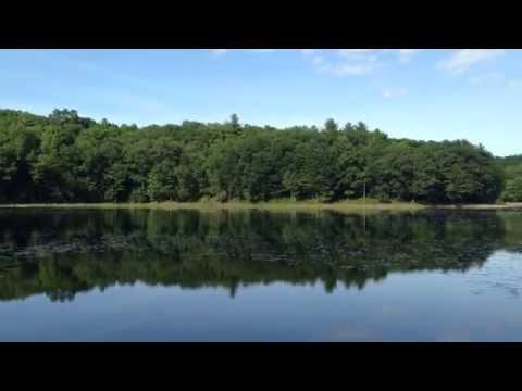 Saratoga lake 1