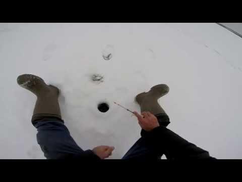 как поймать густеру зимой