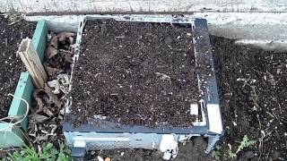 Simple Homemade Raised Beds -the Wisconsin Vegetable Gardener Straight To The Point