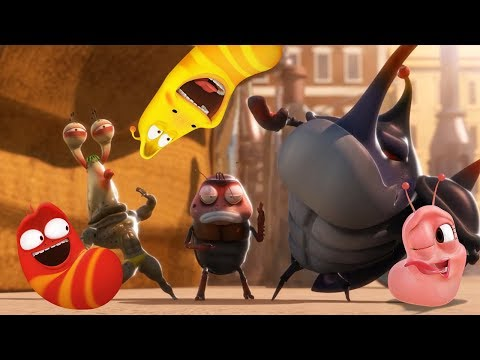 LARVA - THE DANCE OFF | Cartoons For Children | LARVA Official