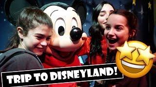 Trip To Disneyland! 🤩 (WK 368) | Bratayley