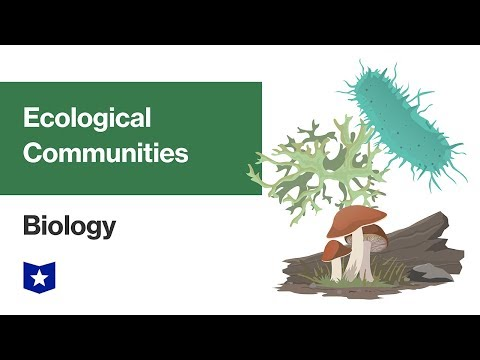 Ecological Communities | Biology