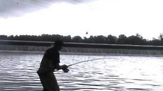 Pêche du Silure avec la canne Mantikor Aramid