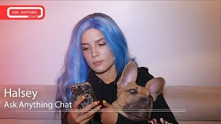 "Halsey's Dog Jagger Acts Cute While She Talks About ""Hopeless Fountain Kingdom"".  Full Chat Here"