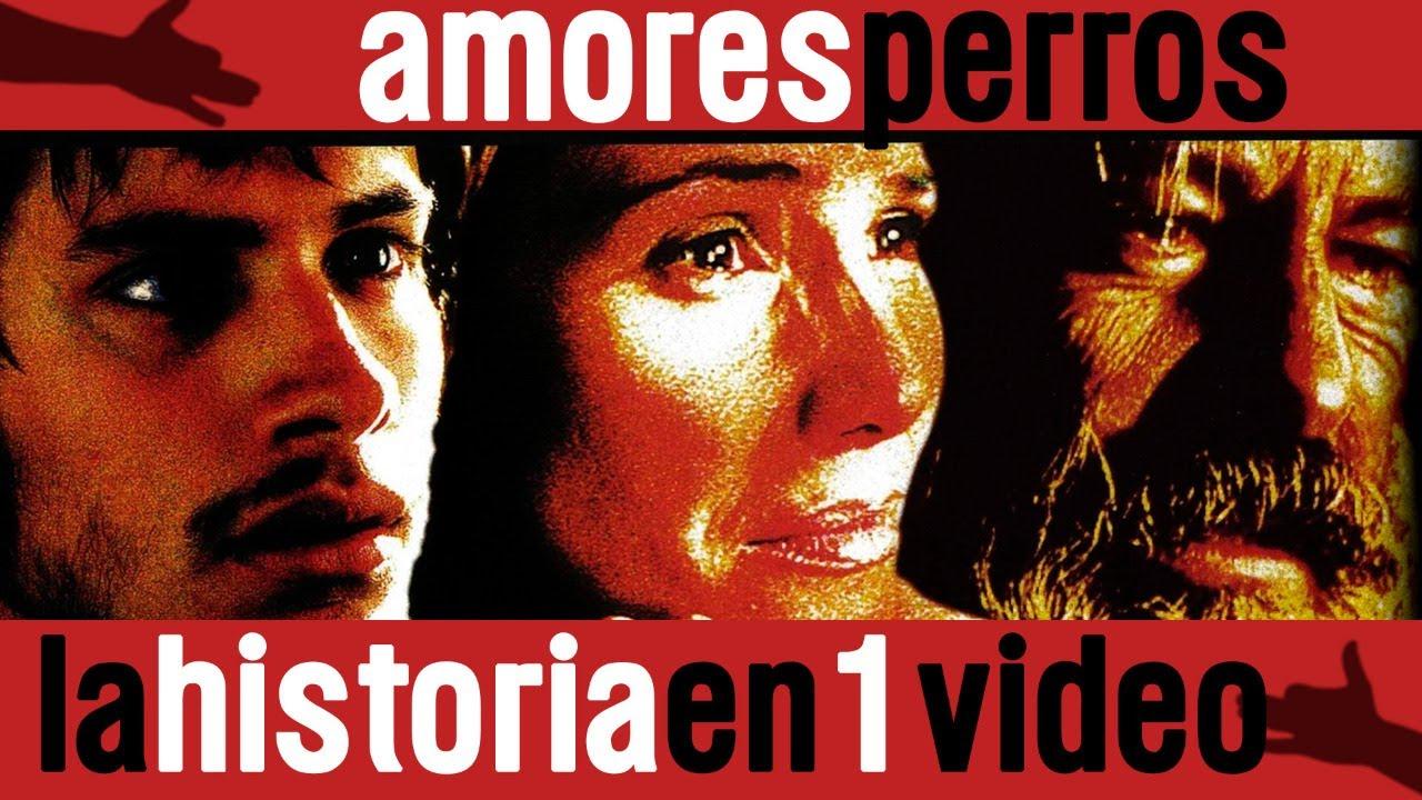 Amores Perros La Historia En 1 Video Youtube