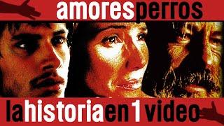 Amores Perros: La Historia en 1 Video