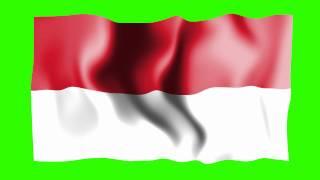 Indonesia Waving Flag - Green Screen Animation