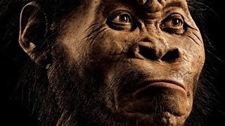 Scientist Found New Species Of Human