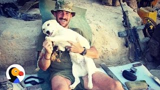 Marine Brings Dog Home From Afghanistan | The Dodo