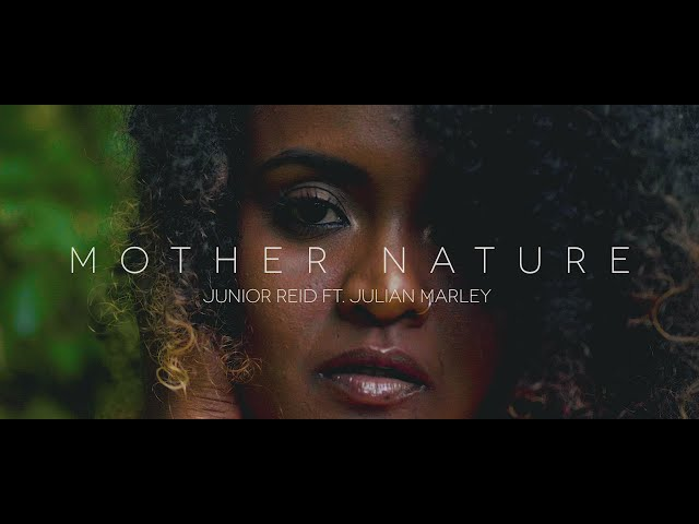 Junior Reid, Julian Marley - Junior Reid feat Julian Marley - Mother Nature