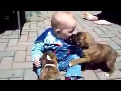Uşaqlar Ve İtler Gulmeli Video Yeni 2016...