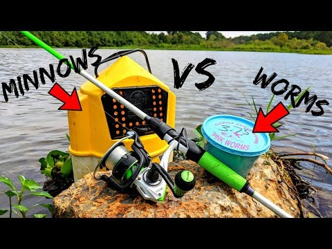Live Bait Fishing Challenge WORMS vs MINNOWS (Which is Better???)