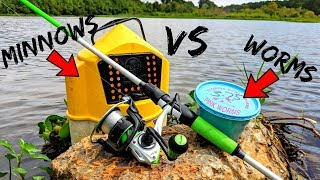 Live Bait Fishing Challenge - WORMS vs MINNOWS - Which is Better?