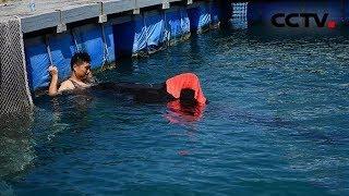 [共同关注]海南三亚 搁浅领航鲸死亡 死亡原因在分析中  CCTV