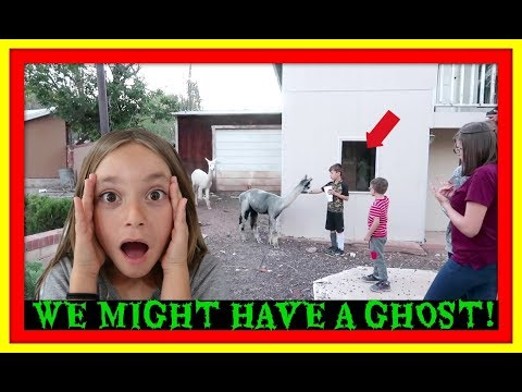 WE MIGHT HAVE A GHOST!   NEW PET!   FAIR TIME!