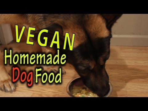 homemade-dog-food-vegan-the-vegan-zombie