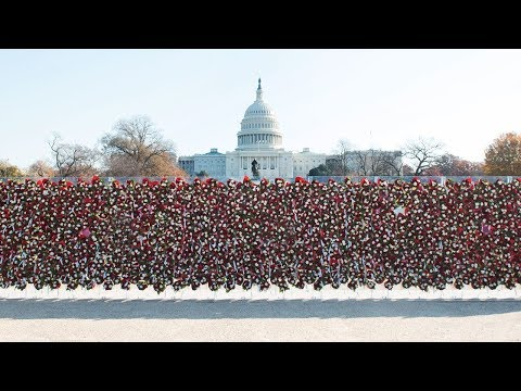 "Teleflora ""Wall of Love"" video ad. Teleflora constructed a 50-foot wide/8-foot high floral wall in Washington, D.C., composed of 1,000 beautiful, handmade floral bouquets to serve as a symbolic outward expression of love—and a universal call-to-action for people to ""Love Out Loud!"" #Teleflora #LoveOutLoud"