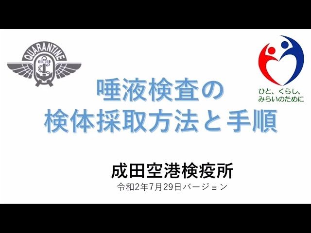 検査 pcr 成田 空港