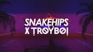 Смотреть клип Snakehips & Troyboi - Wavez