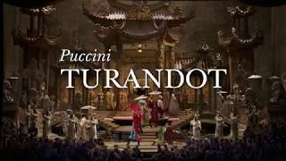 Turandot at the Met