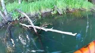 Ставлю сети на озере