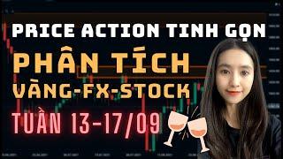 ✅ Phân Tích VÀNG-FOREX-STOCK Tuần 13-17/09 Theo Phương Pháp Price Action Tinh Gọn   TraderViet