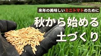 脱サラ 農業