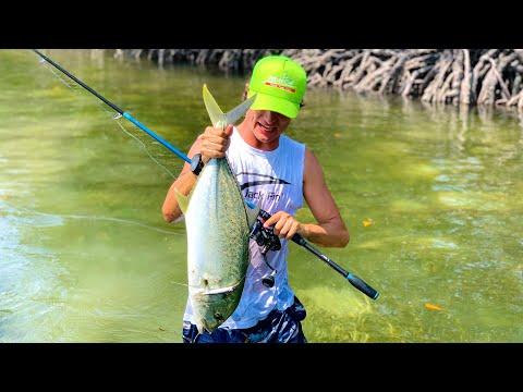 FISHING INSIDE THE KENYAN MANGROVES