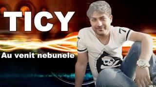 TICY,LIVIU PUSTIU si MR.JUVE - Au venit nebunele ( Official Track )