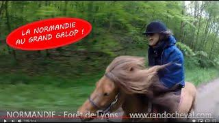 Rando Cheval en Normandie - Galops de rêve par Randocheval !