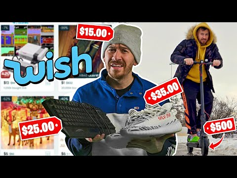I Lived Off ONLY Wish Products for 24 Hours!!