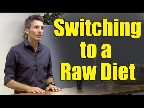 Transitioning to a Raw Diet – Safely