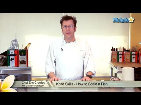 Knife Skills - How To Scale A Fish