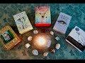 "Animal Spirit Decks & First Impressions of ""The Spirit Animal Oracle"""
