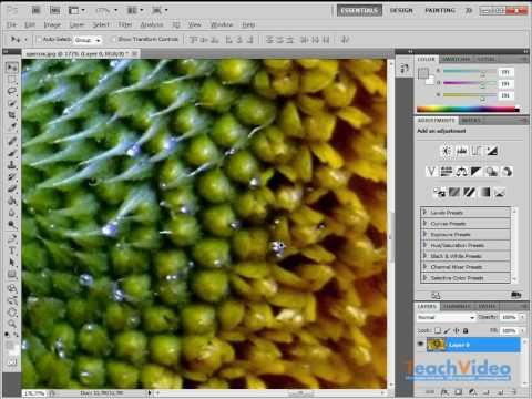 Системные требования для Adobe Photoshop CS5 (3/19)