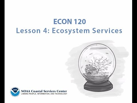 Econ 120: Two-Minute Economic Lessons (Ecosystem Services)