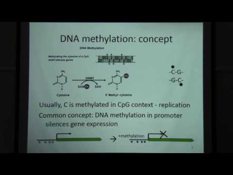 Dna methylation and bisulfite sequencing data analysis