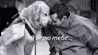 Г Троепольский ''Белый Бим Чёрное ухo''