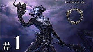 The Elder Scrolls Online - Premiers Pas sur le Jeu | Playthrough #1 FR HD