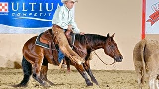 Cutting Horses - How to Ride, Train & Show