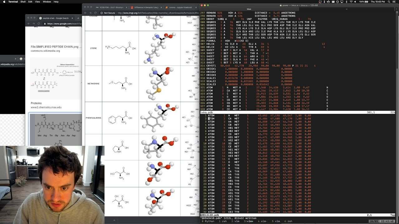 Download George Hotz | Programming | coronavirus 6, the bioinformatics stream #lockdown part6 | COVID-19