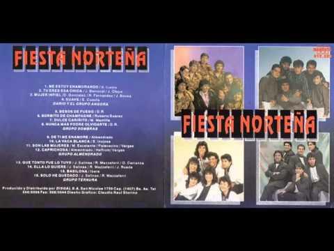 Musica de la Fiesta Norteña - Cumbias del Recuerdo 1992