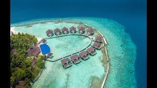 Отель ELLAIDHOO MALDIVES BY CINNAMON 4* (Мальдивы) самый честный обзор от ht.kz